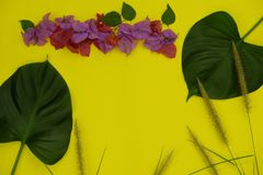 Tropical composition. Frame made of leaves and flowers on yellow background, flat lay stock images