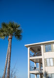 Tropical Condo Under Blue Sky and Palm Tree. A tropical beach condo under a clear blue sky Royalty Free Stock Photography