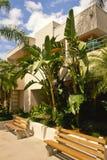 Tropical Condominium Stock Photography
