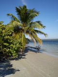 Tropical consiga lejos Fotografía de archivo libre de regalías
