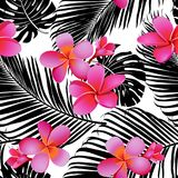 Tropical coral flowers and leaves on black and white background. Seamless. Vector. royalty free illustration