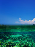 Tropical Coral Reef Royalty Free Stock Photos