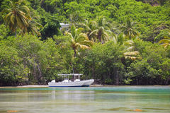 Tropical cove. Two small boats sitting in beautiful tropical cove Royalty Free Stock Images