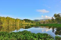 Tropical da paisagem natural Imagens de Stock