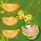 Tropical day background with splashes Stock Photos