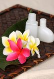 Tropical Day Spa Beauty Products. Close of pink, yellow and white frangiapani / plumeria flower with day spa beauty products on leaf and woven bamboo matt Royalty Free Stock Photography