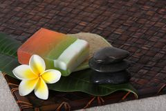 Tropical Day Spa Beauty Products Stock Image