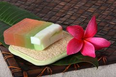 Tropical Day Spa Beauty Products Stock Photo