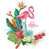 Tropical decoration with Flamingoes and Trop Royalty Free Stock Images