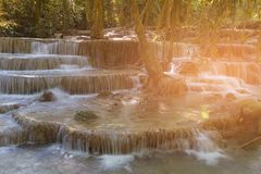 Tropical deep forest jungle stream waterfall Royalty Free Stock Photos