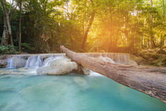 Tropical deep forest stream waterfall Royalty Free Stock Photo