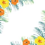 Tropical design border frame template with green jungle palm tree leaves and exotic orange and yellow hibiscus flowers couple. vector illustration