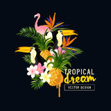 Tropical Design Elements Stock Images