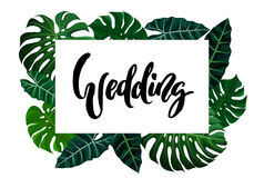 Tropical design with exotic palm leaves. Wedding calligraphy lettering and tropical design with green exotic palm leaves on white square frame. Vector Stock Photo
