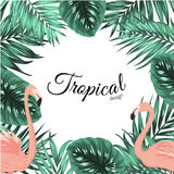 Tropical design frame template leaves flamingos Royalty Free Stock Image