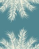 Tropical design with vanilla palm leaves and plants on blue background Royalty Free Stock Photography