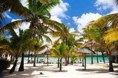 Tropical Destination Royalty Free Stock Photography