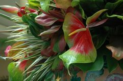Tropical Display. Centerpiece in Hawaiian Hotel royalty free stock images