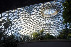 The Tropical Display Dome at Brisbane Botanic Gardens. Mt Coot-tha Queensland, Australia royalty free stock photography