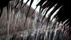 Tropical downpour. Raindrops fall from roof stock video footage