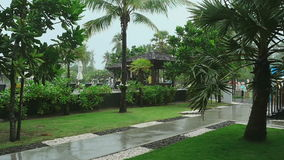Tropical downpour, slow motion. Tropical downpour in the courtyard of the hotel, Phuket Thailand, slow motion stock video