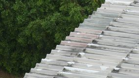 Tropical downpour in Thailand. Rain on the roof. A tropical downpour in Thailand. Rain on the roof stock video