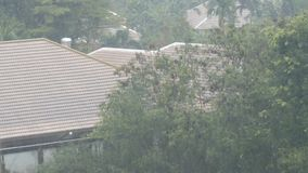 A tropical downpour in Thailand. Rain by Wall. A tropical downpour in Thailand. Rain by the Wall stock video