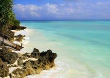 Tropical dream. The beautiful coastline of Zanzibar Stock Images