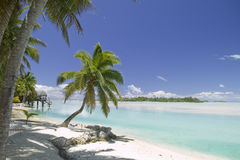 Tropical Dream Beach Paradise. Of the South Pacific Royalty Free Stock Photo
