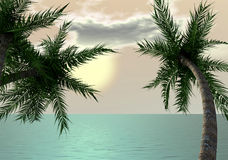 Tropical dream at sunset. Palm tree and the ocean - digital art worl Royalty Free Stock Image
