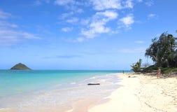 Tropical dreams Royalty Free Stock Photo