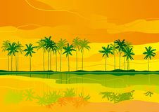Tropical dreams Royalty Free Stock Photo