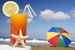 Tropical Drink Royalty Free Stock Photo
