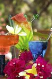 Tropical Drinks. Colorful tropical drinks, homemade conconcoctions of great rum ,tequila, vodka and other mixers Stock Images
