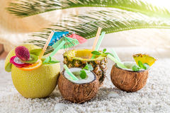 Tropical drinks in fresh fruits with cocktail umbrellas Stock Image