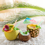 Tropical drinks in fresh fruits in sunny day Royalty Free Stock Images