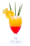 Tropical Drinks Stock Photography