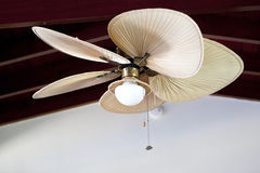 Tropical electric fan an cealing Stock Photos