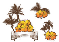 Tropical elements1 Royalty Free Stock Image