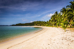 Tropical empty beach with palms - Port Barton Stock Image