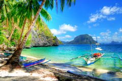 Tropical escape royalty free stock photo