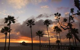Tropical evening. Silhouette of palm trees in a beach scene with pier extending into ocean and clouds gathering during sunset Stock Image