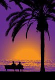 Tropical evening Royalty Free Stock Images