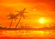 Tropical evening scenery Royalty Free Stock Photos