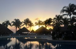 Tropical evening. Royalty Free Stock Photography