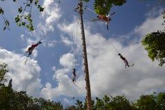 ¾ tropical exótico del  Ð de Yucatán MexiÑ del maya ritual su Foto de archivo