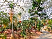 Tropical Exhibition Greenhouse interior Stock Photo