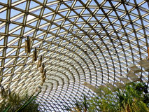 Tropical Exhibition Greenhouse roof Royalty Free Stock Photo