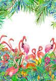 Tropical exotic bird, leaves and flowers. Watercolor summer floral background Royalty Free Stock Images