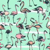 Tropical exotic birds flamingos summer seamless pattern. Pink a Stock Images